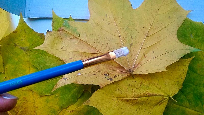клеем листья