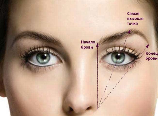 схема создания формы бровей в соотношении с глазами