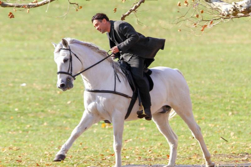 Каждая девушка, ну или почти каждая, мечтает «о прекрасном принце на белом коне»