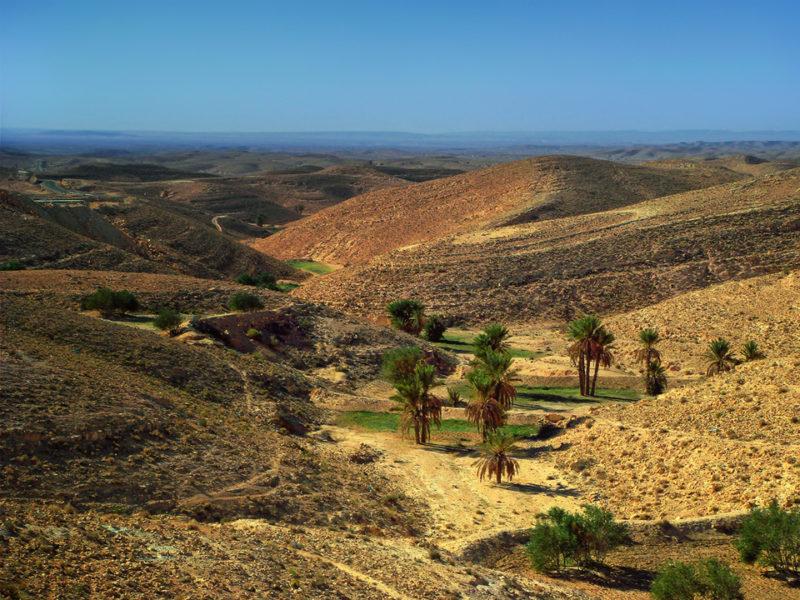 Тунис, живописные равнины – в общем есть на что посмотреть.