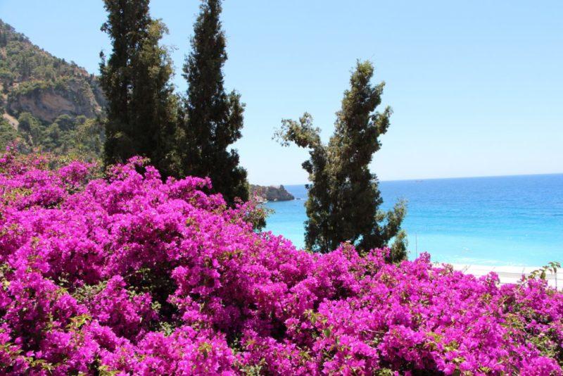 В Турции пора цветения – апрель