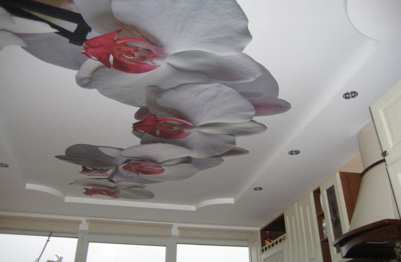 орхидеи принт на потолке