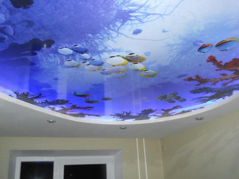 подводный мир на натяжном потолке