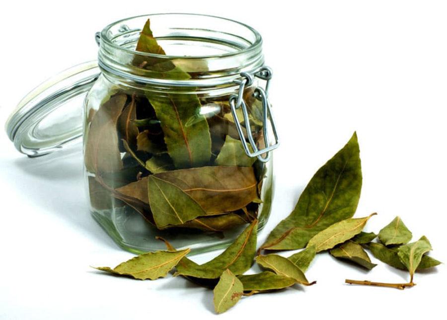 Настой из лавровых листьев